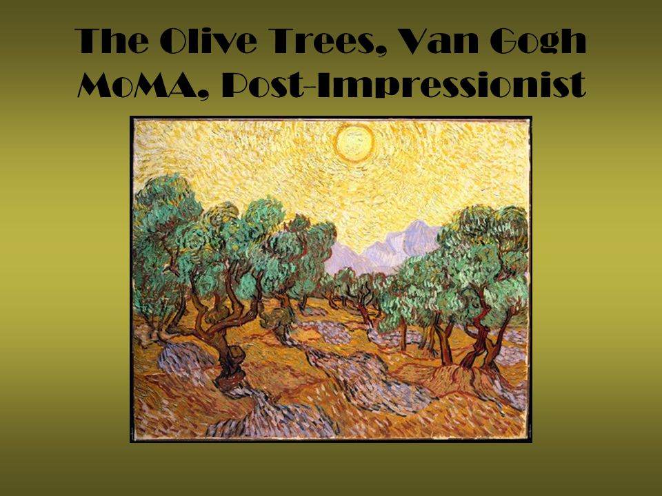 The Olive Trees, Van Gogh MoMA, Post-Impressionist