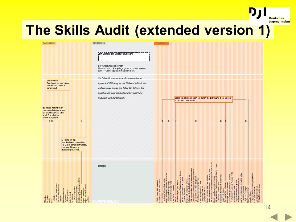 14 The Skills Audit (extended version 1)