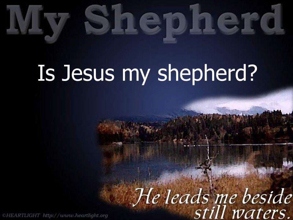 Is Jesus my shepherd?