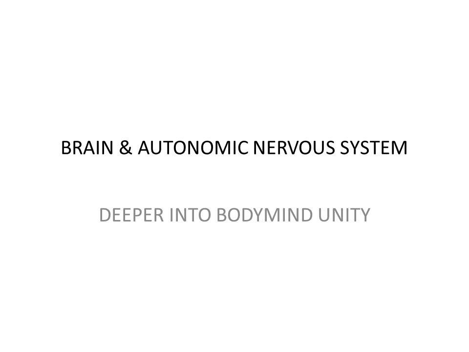 BRAIN & AUTONOMIC NERVOUS SYSTEM DEEPER INTO BODYMIND UNITY