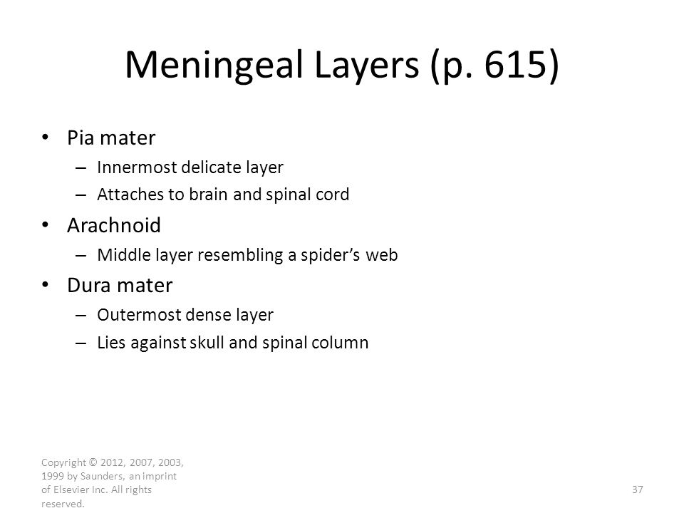 Copyright © 2012, 2007, 2003, 1999 by Saunders, an imprint of Elsevier Inc. All rights reserved. Meningeal Layers (p. 615) Pia mater – Innermost delic