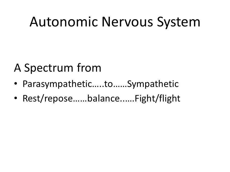 Autonomic Nervous System A Spectrum from Parasympathetic…..to……Sympathetic Rest/repose……balance..….Fight/flight