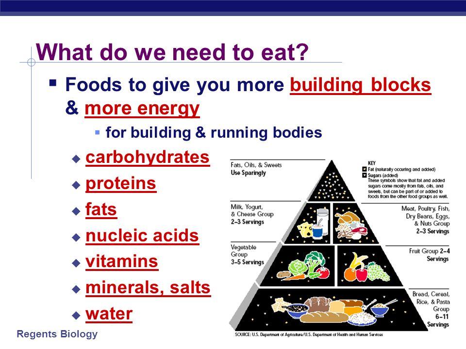 Regents Biology Why do we eat.