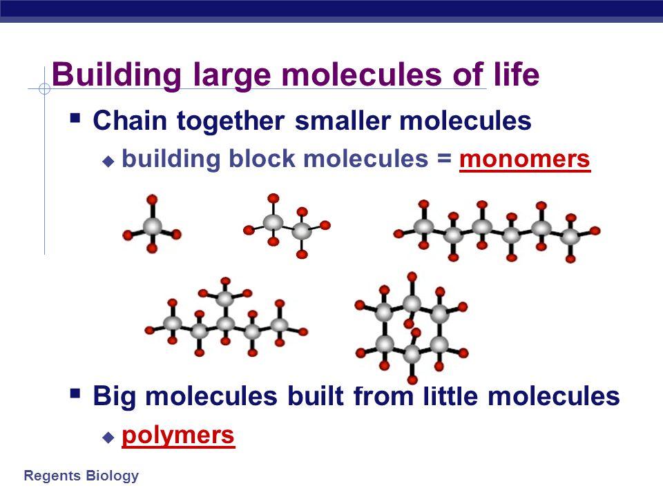 Regents Biology 2006-2007 How do we make these molecules? We build them!
