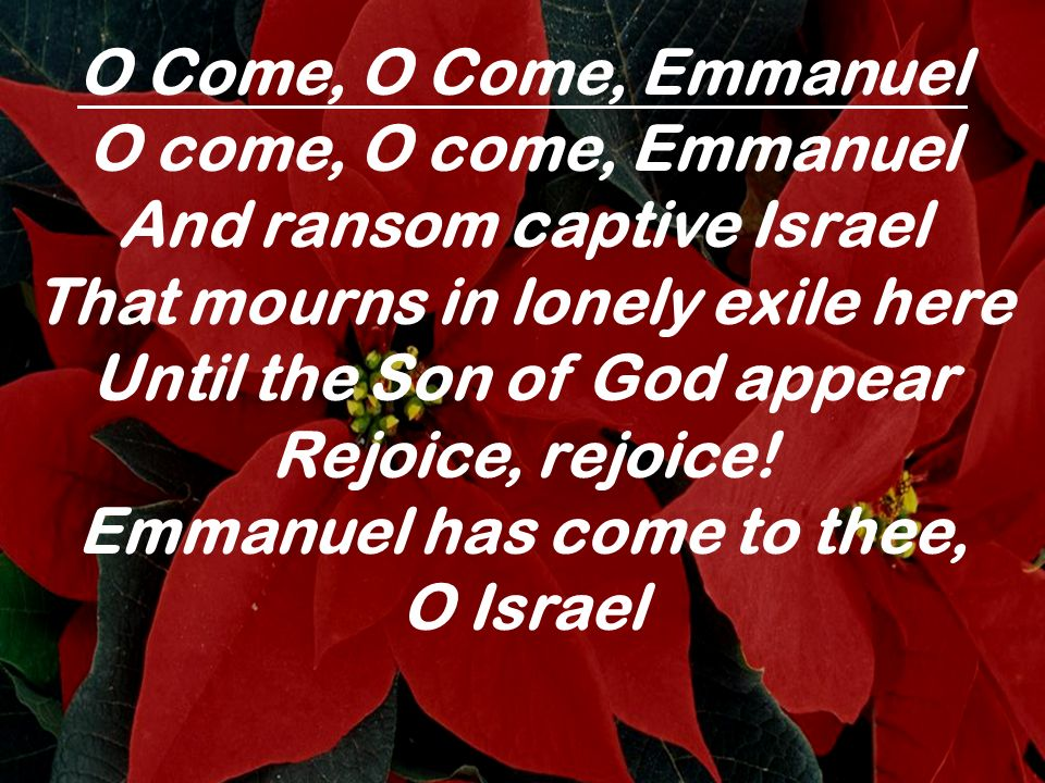 O come thou wisdom from on high And order all things far and nigh To us the path of knowledge show And cause us in her ways to go Rejoice, rejoice, Emmanuel Shall come to thee, O Israel