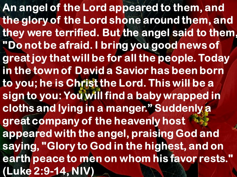 An angel of the Lord appeared to them, and the glory of the Lord shone around them, and they were terrified. But the angel said to them,
