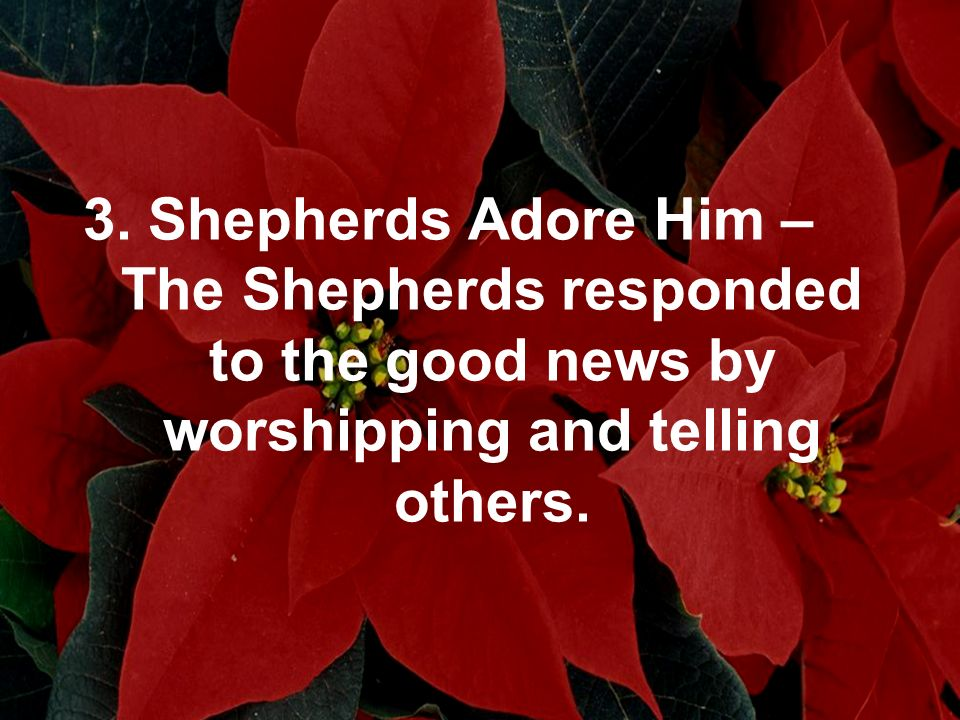 3. Shepherds Adore Him – The Shepherds responded to the good news by worshipping and telling others.