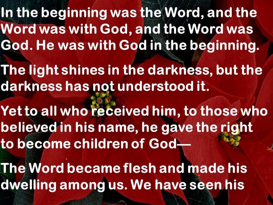 In the beginning was the Word, and the Word was with God, and the Word was God. He was with God in the beginning. The light shines in the darkness, bu
