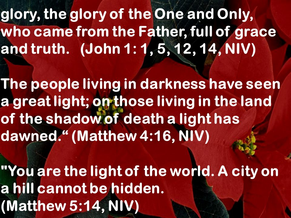 glory, the glory of the One and Only, who came from the Father, full of grace and truth. (John 1: 1, 5, 12, 14, NIV) The people living in darkness hav