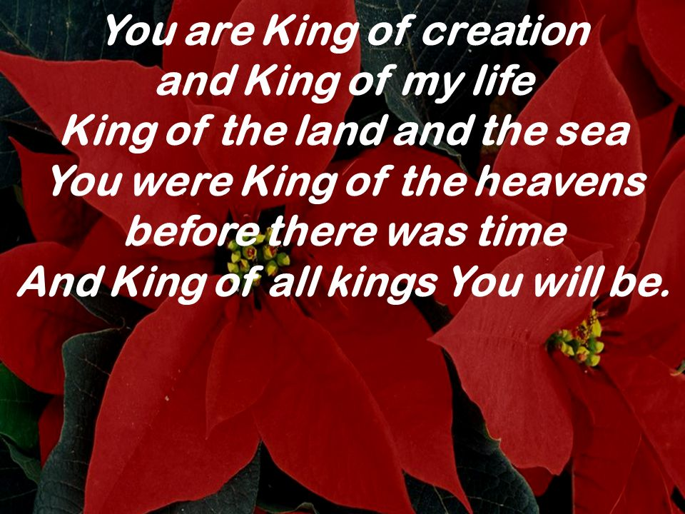 You are King of creation and King of my life King of the land and the sea You were King of the heavens before there was time And King of all kings You