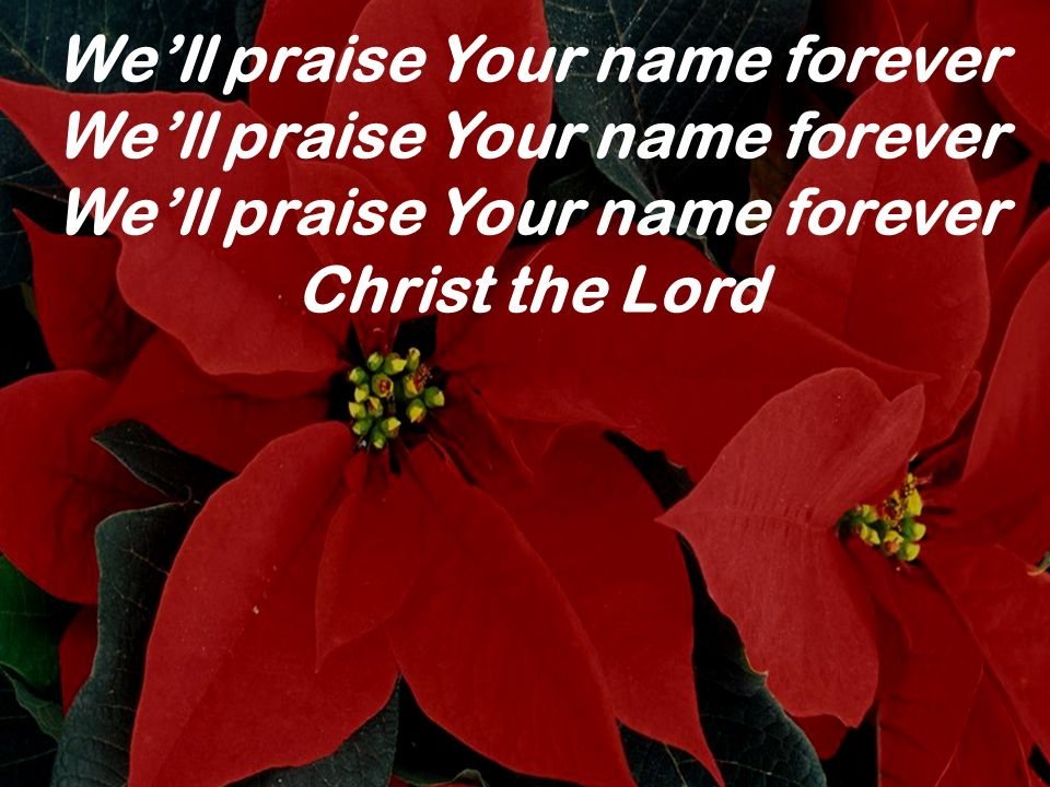 Well praise Your name forever Christ the Lord