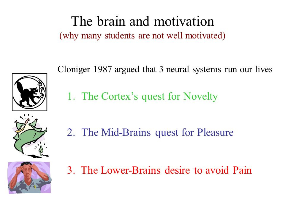 The brain and motivation (why many students are not well motivated) Cloniger 1987 argued that 3 neural systems run our lives 1.The Cortexs quest for N