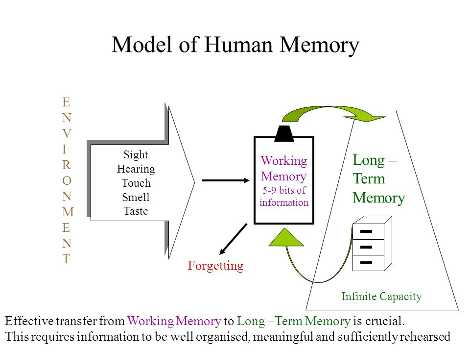 Model of Human Memory Sight Hearing Touch Smell Taste Sight Hearing Touch Smell Taste Working Memory 5-9 bits of information Long – Term Memory ENVIRO