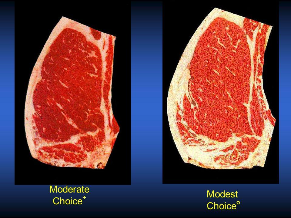Modest Choice o Slightly Abundant Prime -