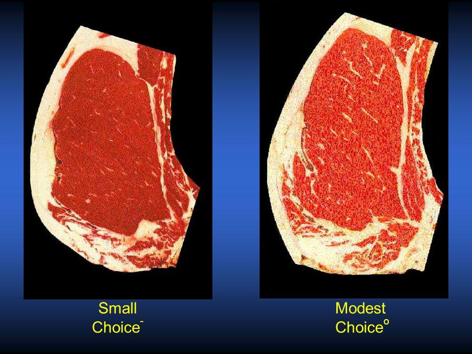 Modest Choice o Moderate Choice +