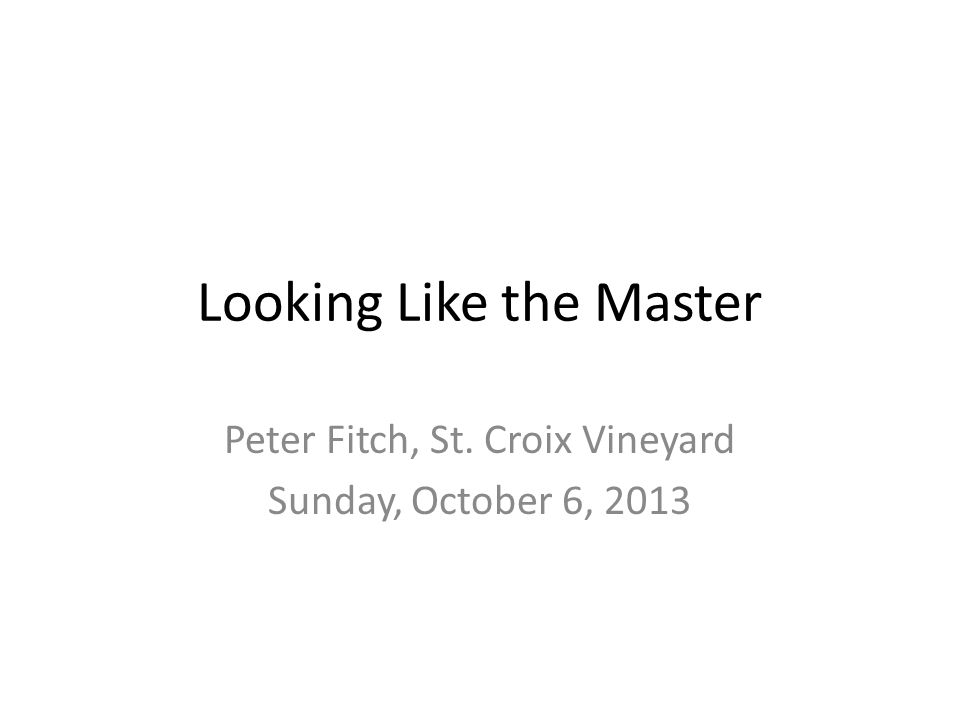 Looking Like the Master Peter Fitch, St. Croix Vineyard Sunday, October 6, 2013