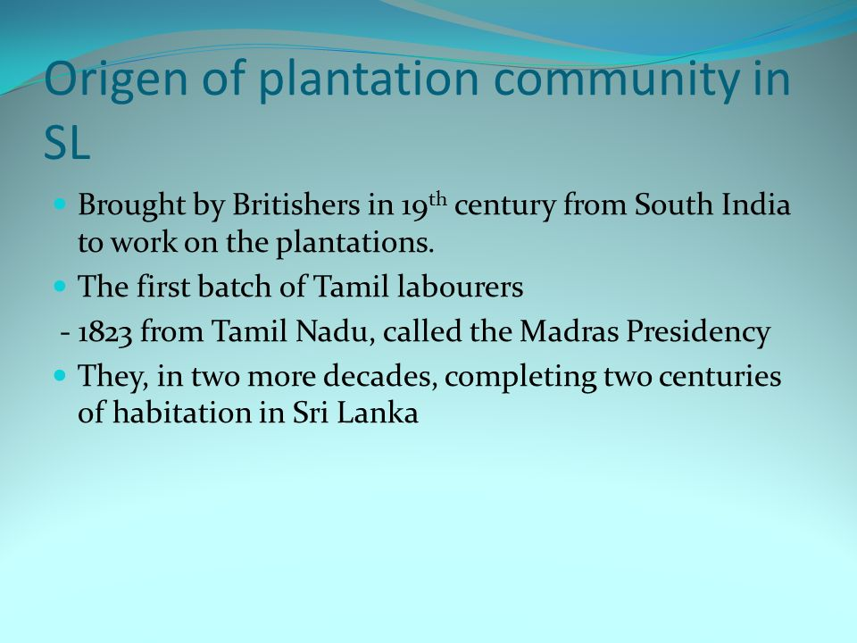 Origen of plantation community in SL Brought by Britishers in 19 th century from South India to work on the plantations. The first batch of Tamil labo