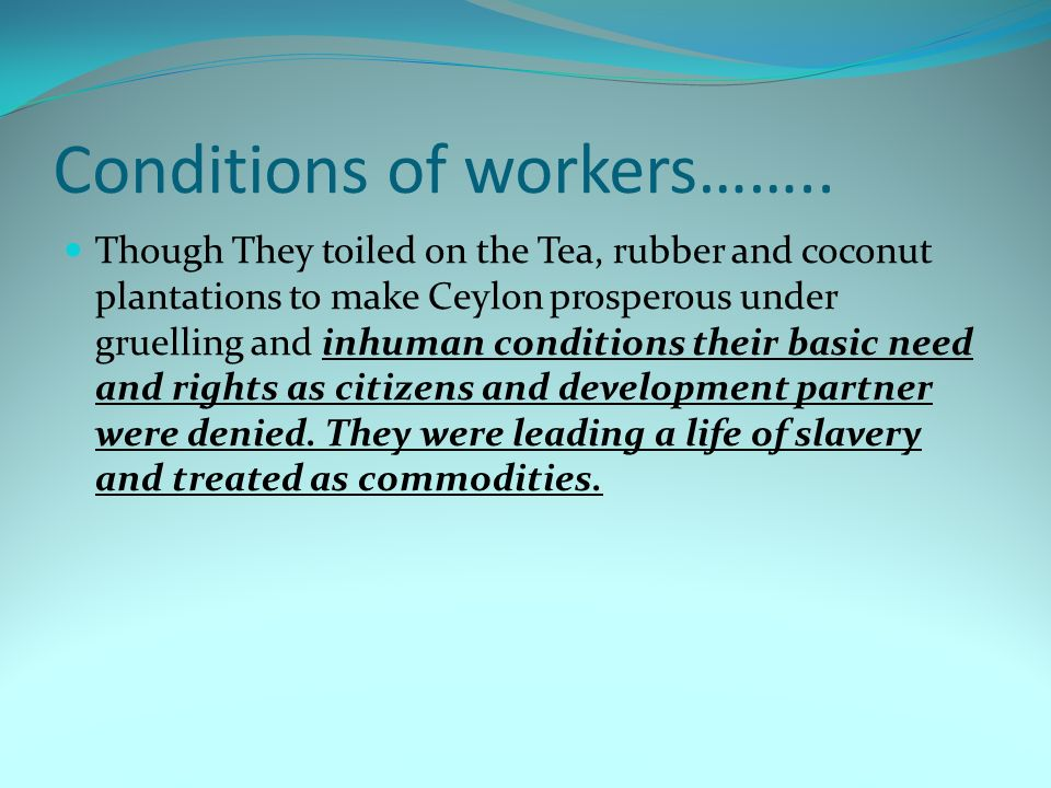 Conditions of workers…….. Though They toiled on the Tea, rubber and coconut plantations to make Ceylon prosperous under gruelling and inhuman conditio