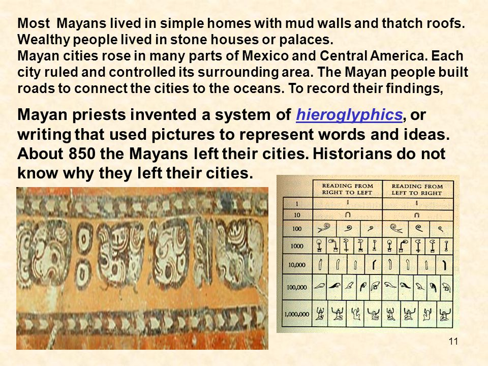 Most Mayans lived in simple homes with mud walls and thatch roofs. Wealthy people lived in stone houses or palaces. Mayan cities rose in many parts of