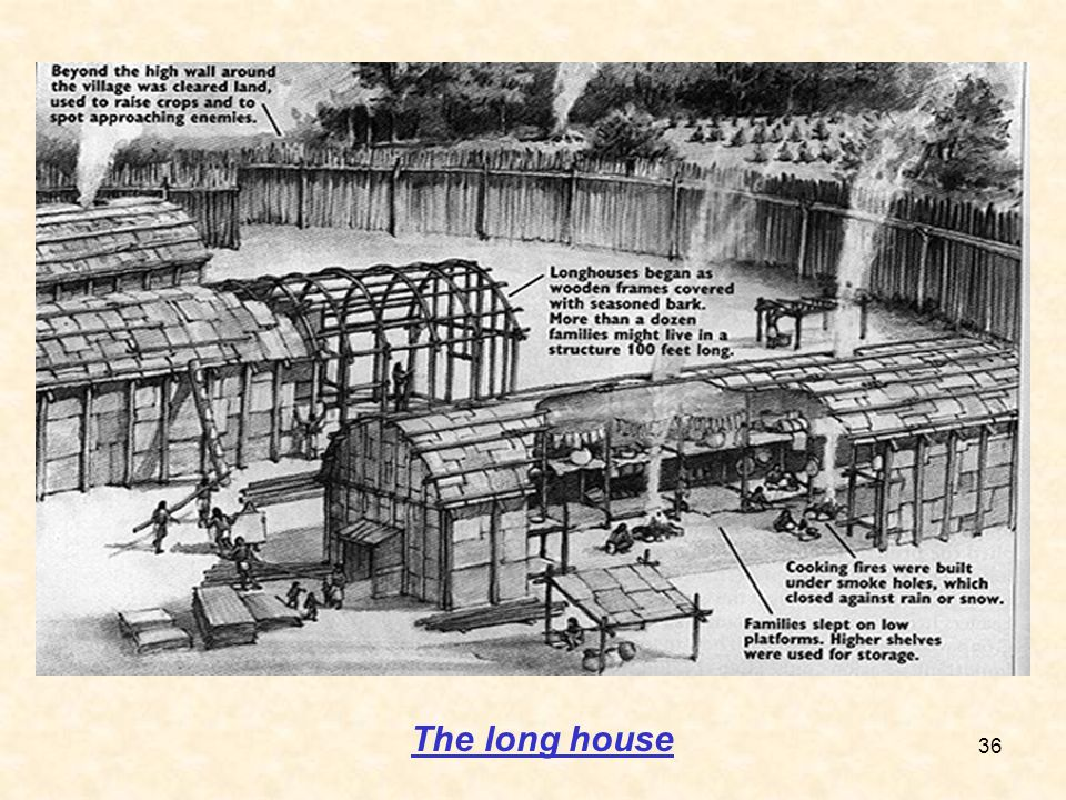 The long house 36