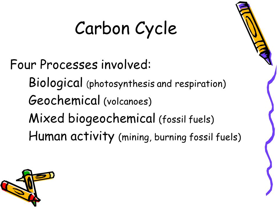 Carbon Cycle Four Processes involved: Biological ( photosynthesis and respiration) Geochemical (volcanoes) Mixed biogeochemical (fossil fuels) Human a