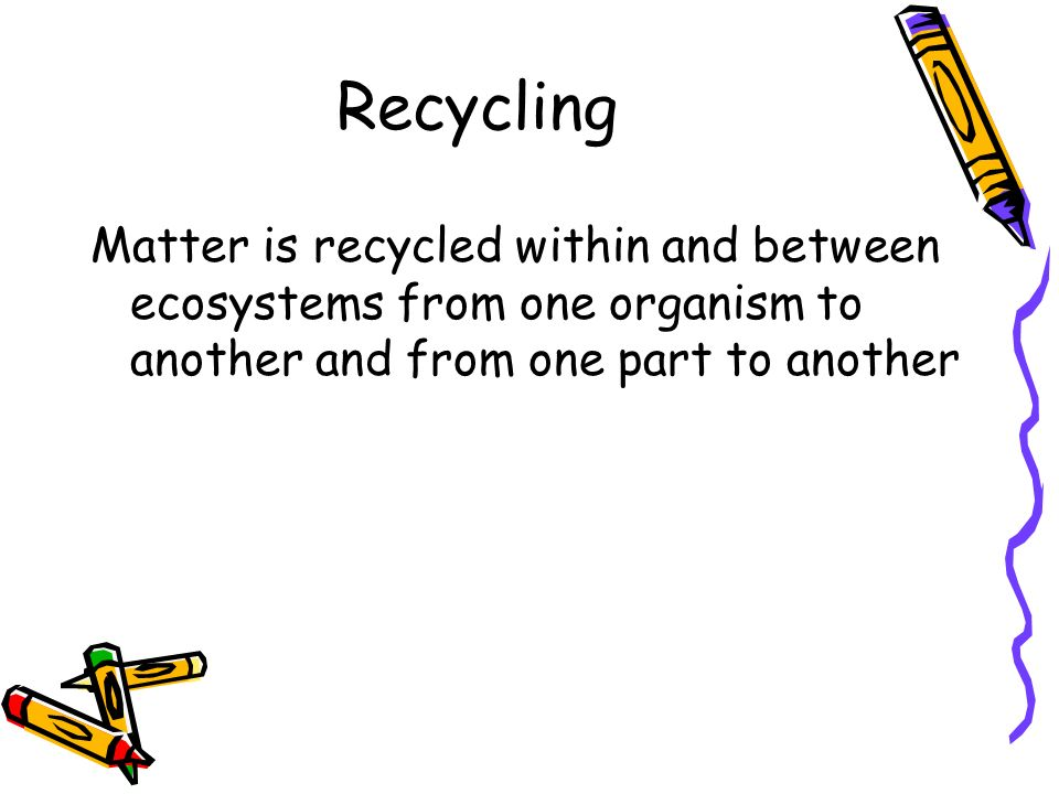 Recycling Matter is recycled within and between ecosystems from one organism to another and from one part to another