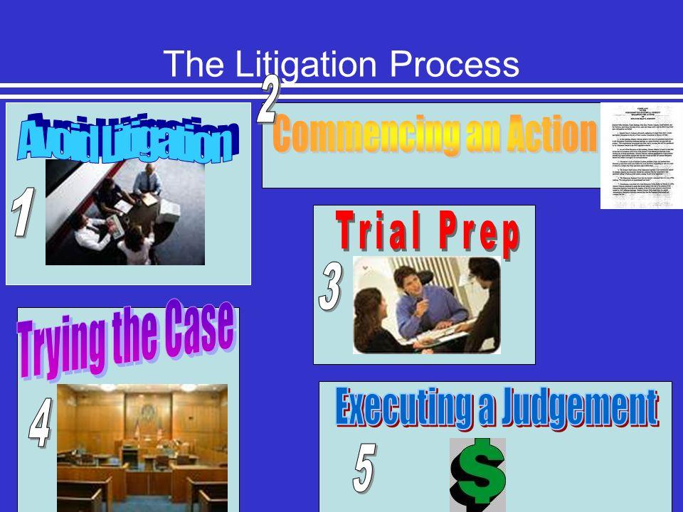 The Litigation Process