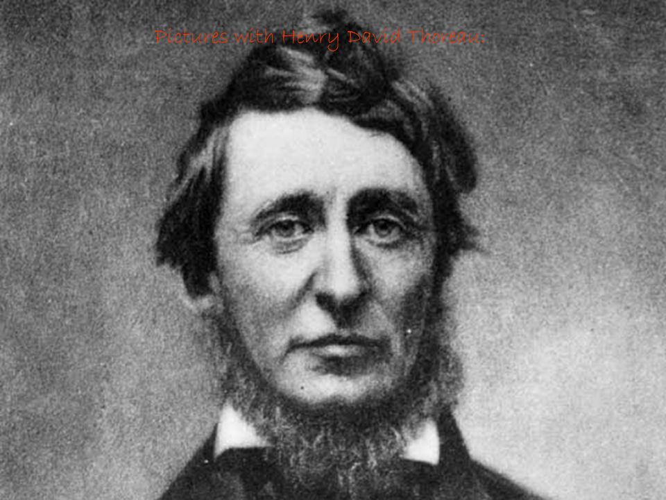Pictures with Henry David Thoreau: