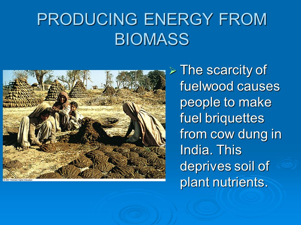 PRODUCING ENERGY FROM BIOMASS The scarcity of fuelwood causes people to make fuel briquettes from cow dung in India. This deprives soil of plant nutri