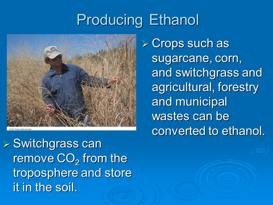 Producing Ethanol Crops such as sugarcane, corn, and switchgrass and agricultural, forestry and municipal wastes can be converted to ethanol. Crops su
