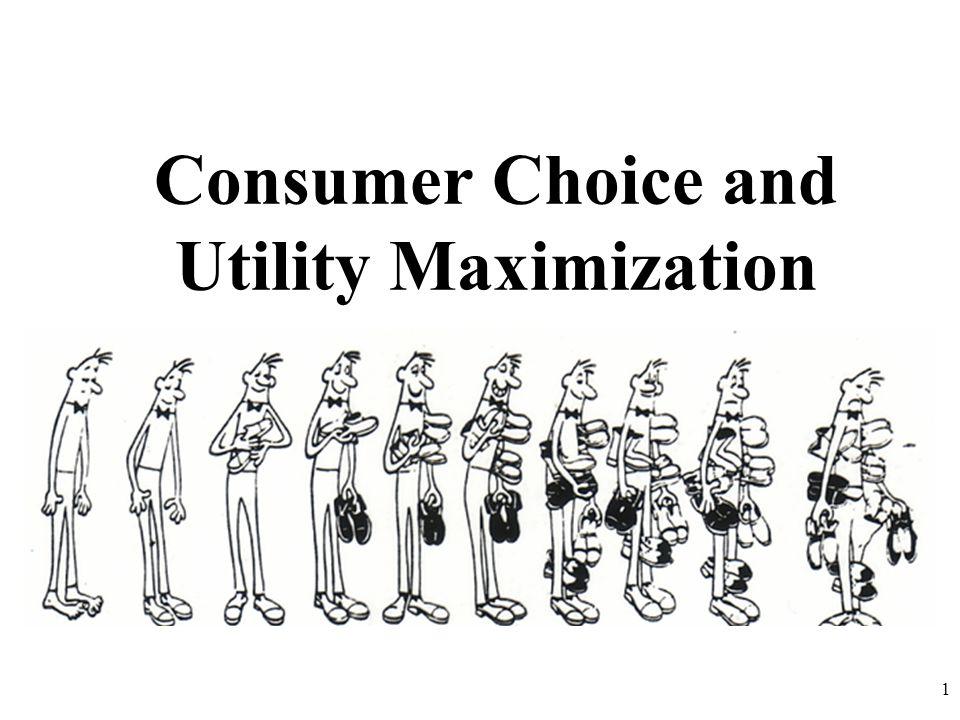 Consumer Choice and Utility Maximization 1