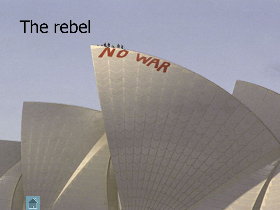 The Rebel These are the people that build the conflict… they help focus societys attention on the problem Rebel individuals or organisations have a wi