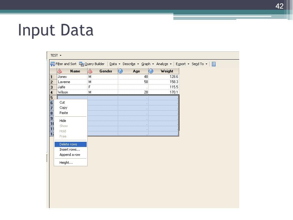 Input Data 42