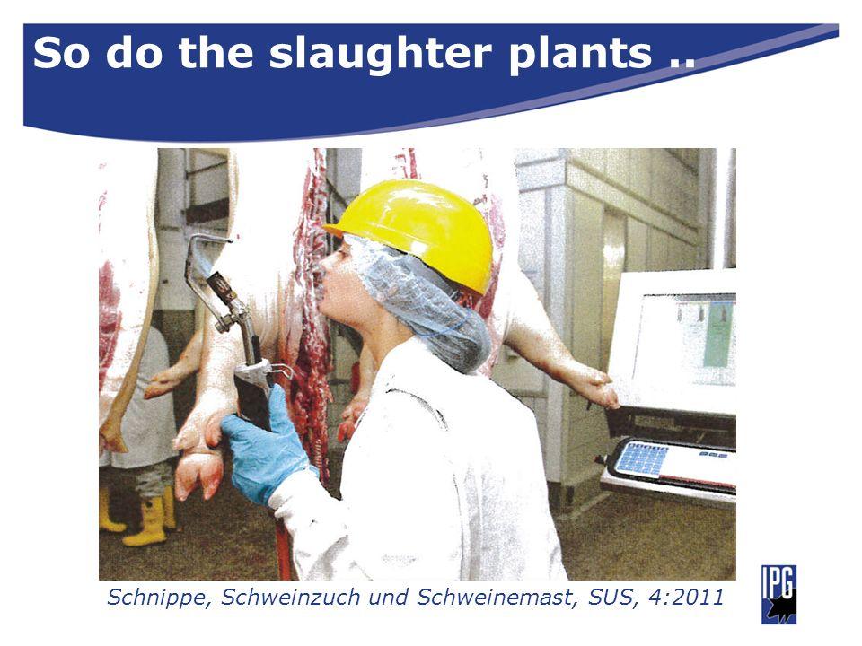 So do the slaughter plants.. Schnippe, Schweinzuch und Schweinemast, SUS, 4:2011