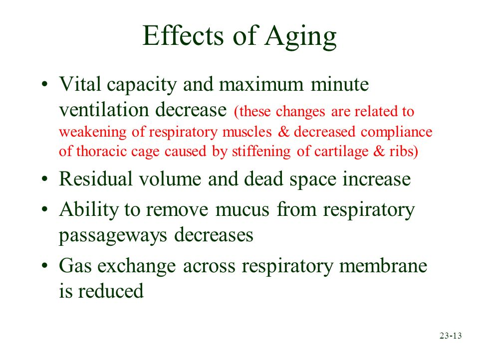23-13 Effects of Aging Vital capacity and maximum minute ventilation decrease (these changes are related to weakening of respiratory muscles & decreas