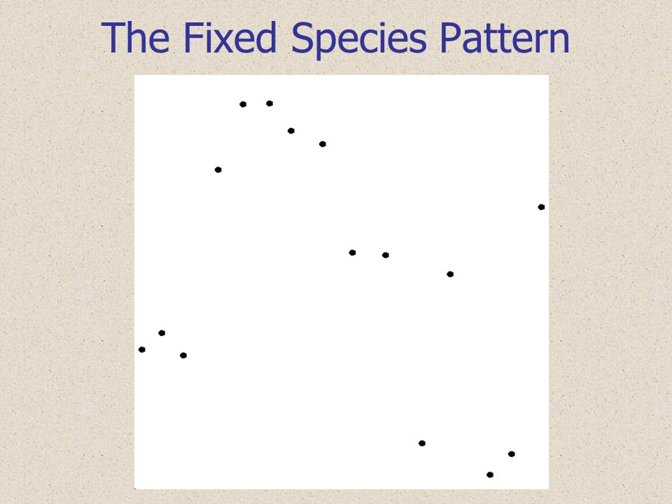 The Fixed Species Pattern