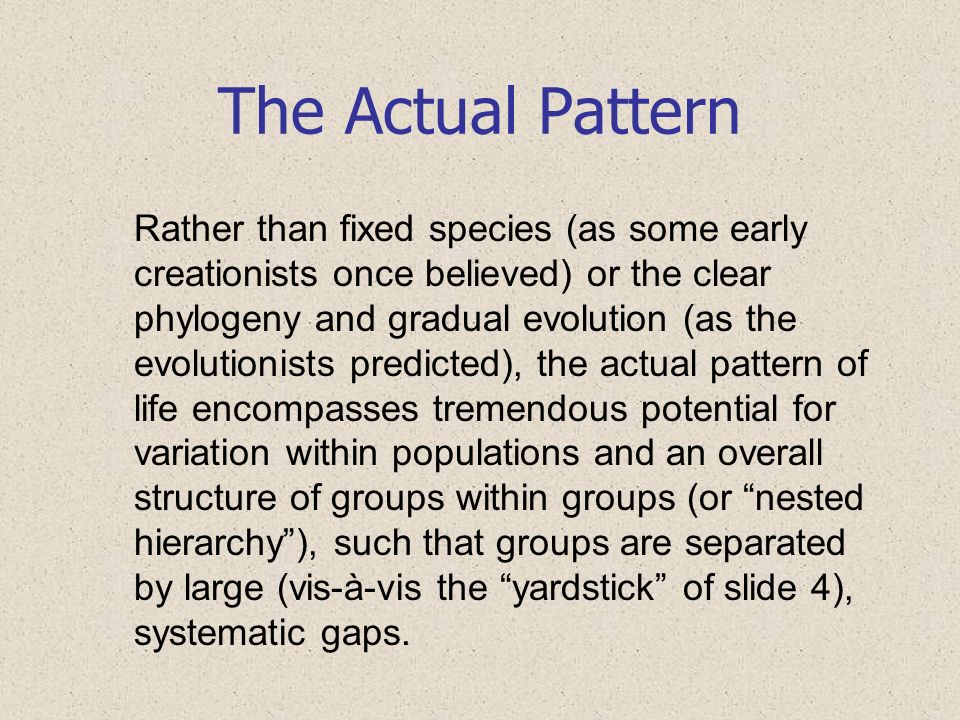 The Actual Pattern Rather than fixed species (as some early creationists once believed) or the clear phylogeny and gradual evolution (as the evolution