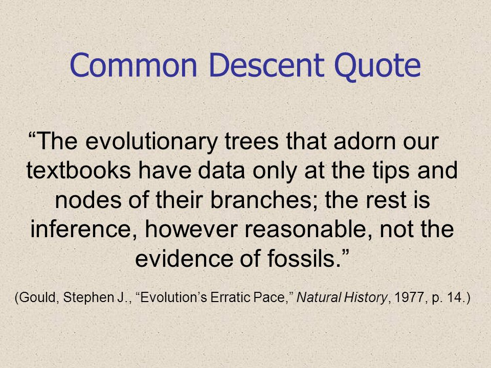Common Descent Quote The evolutionary trees that adorn our textbooks have data only at the tips and nodes of their branches; the rest is inference, ho