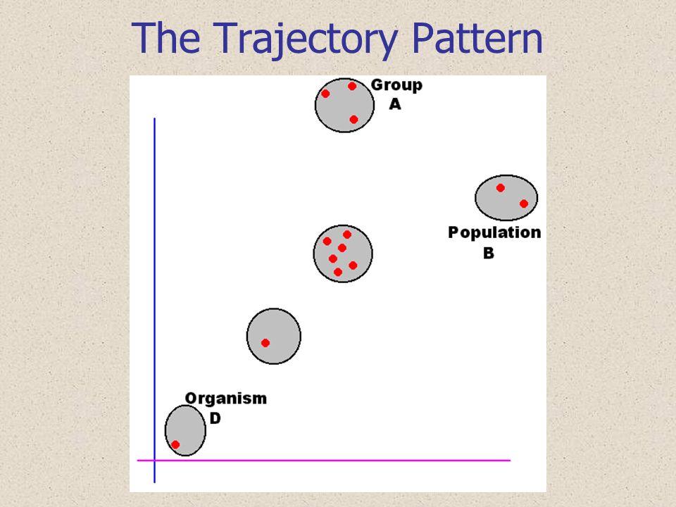 Gradual Integradation Pattern
