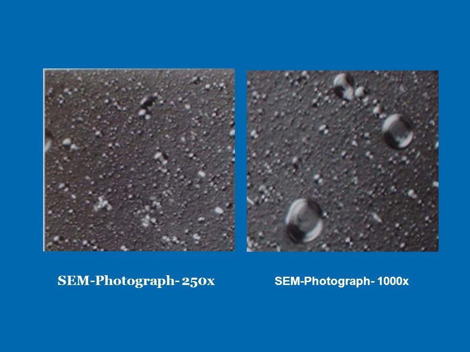 SEM-Photograph- 250x SEM-Photograph- 1000x