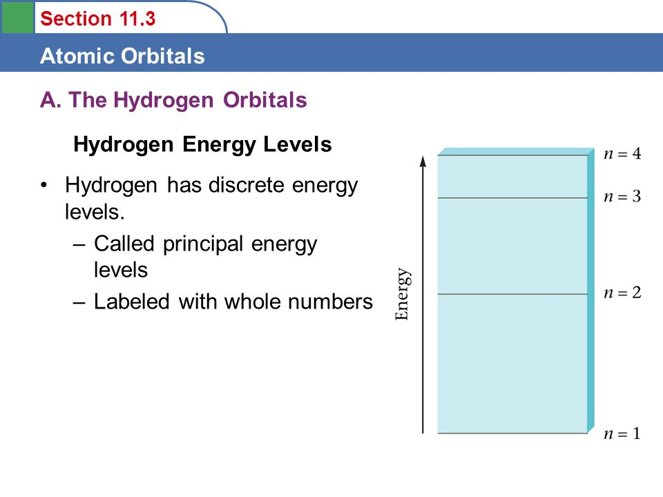 Section 11.3 Atomic Orbitals A. The Hydrogen Orbitals Hydrogen has discrete energy levels. –Called principal energy levels –Labeled with whole numbers