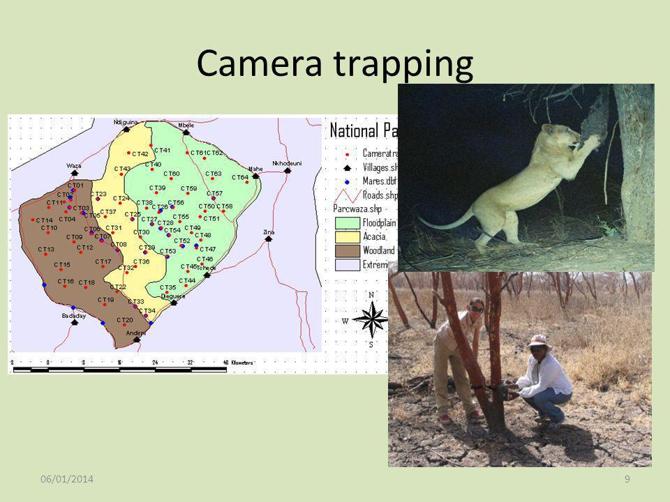9 Camera trapping