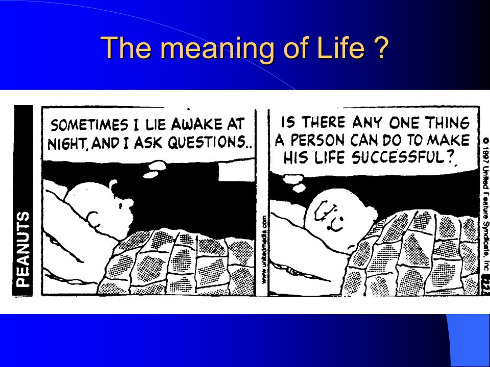 The meaning of Life ?