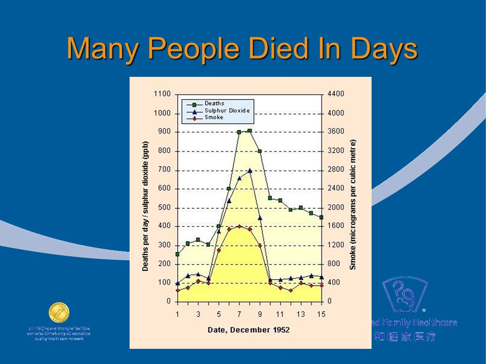 Many People Died In Days