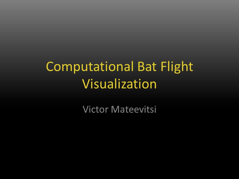Computational Bat Flight Visualization Victor Mateevitsi