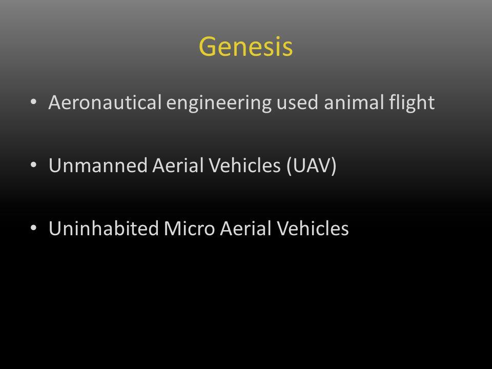 Genesis Aeronautical engineering used animal flight Unmanned Aerial Vehicles (UAV) Uninhabited Micro Aerial Vehicles