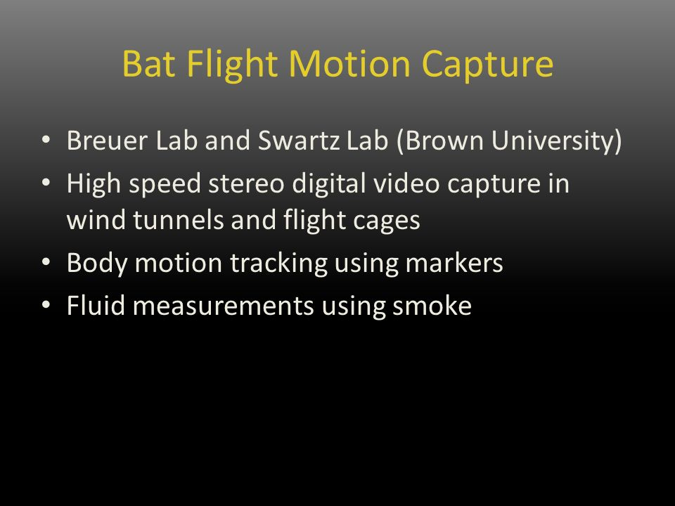 Bat Flight Motion Capture Breuer Lab and Swartz Lab (Brown University) High speed stereo digital video capture in wind tunnels and flight cages Body motion tracking using markers Fluid measurements using smoke