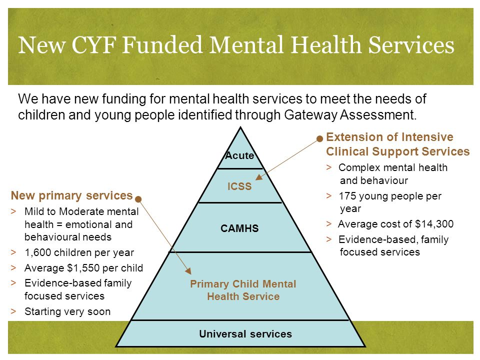New CYF Funded Mental Health Services Acute ICSS CAMHS Primary Child Mental Health Service Universal services We have new funding for mental health se