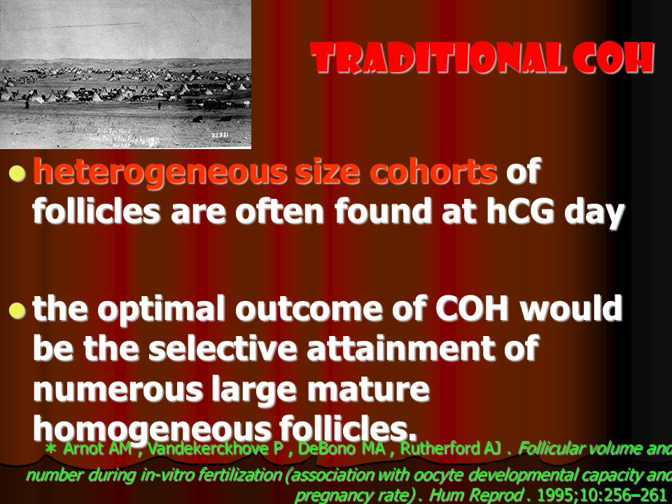 Traditional COH heterogeneous size cohorts of follicles are often found at hCG day heterogeneous size cohorts of follicles are often found at hCG day