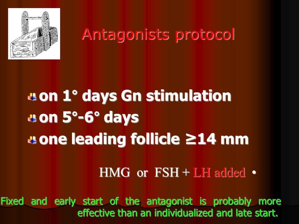 on 1° days Gn stimulation on 5°-6° days one leading follicle 14 mm HMG or FSH + LH addedHMG or FSH + LH added Antagonists protocol Fixed and early sta